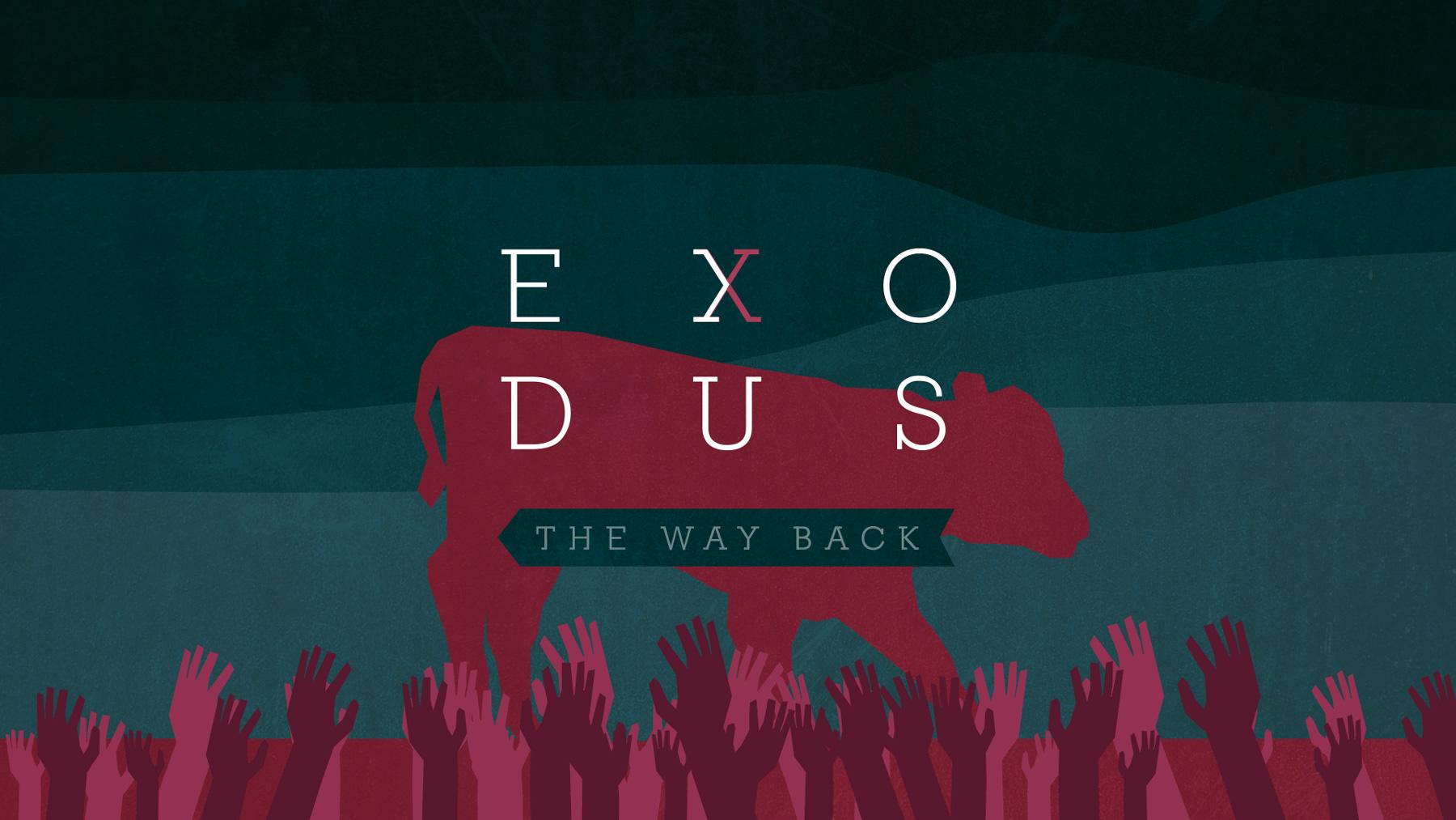 exodus-08
