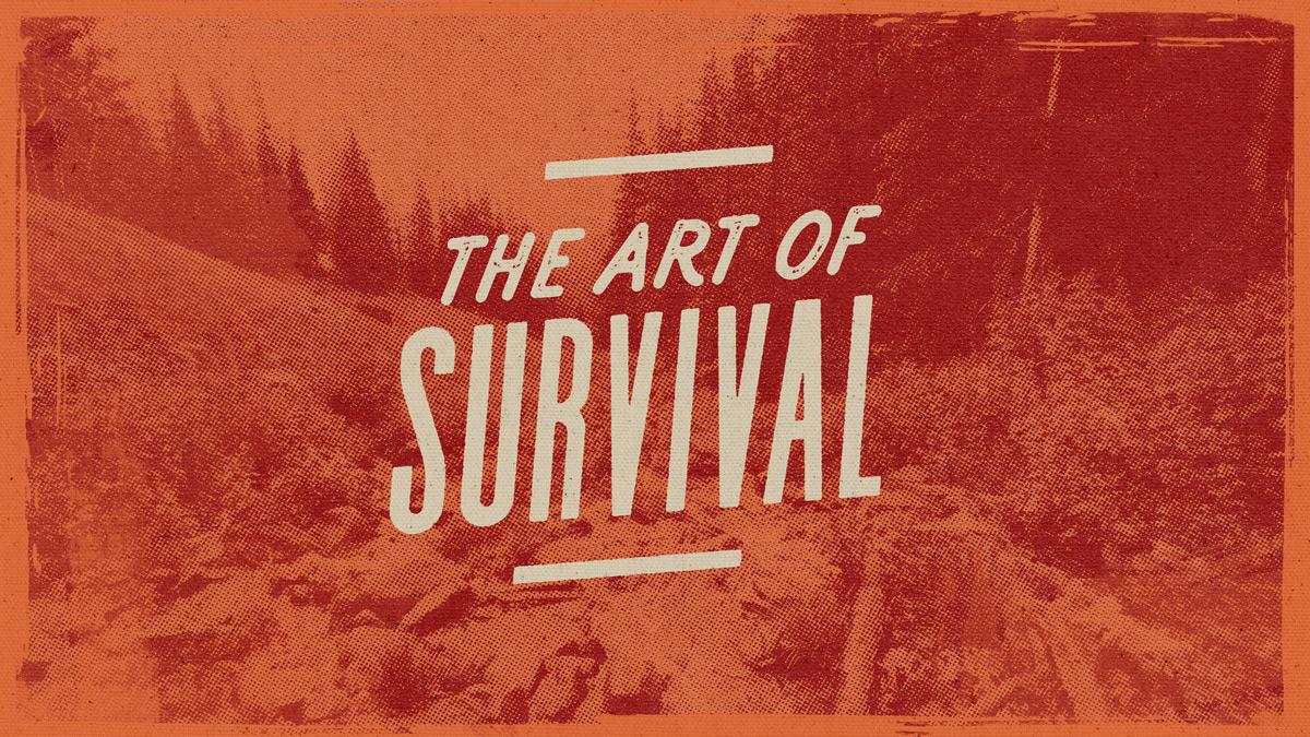 art-of-survival-slide